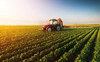 Πωλούνται Αγροτεμάχια στα Χανιά από την ΑΝΑΠΤΥΞΗ Κτηματομεσιτική