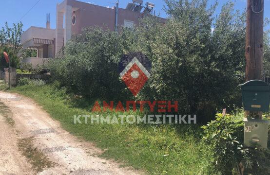Πωλείται εξαιρετικό οικόπεδο 314 τ.μ. εντός οικισμού στο Κόκκινο Μετόχι.